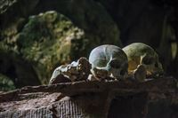 2017-02-05 Toraja and the dead